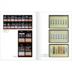 """Les séries """"Shell que j'aime"""" et """"20° Celsius"""" de Bertrand Lavier dans """"Photographie. Tentative de catalogue raisonné"""""""