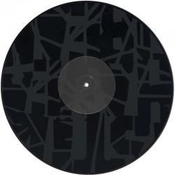 La face B du disque de Tania Mouraud