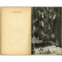"""Une des 8 photos d'Édouard Boubat illustrant le livre de Robert Crégut """"La tête froide """""""