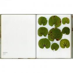 """double page du livre d'Anne et Patrick Poirier """"Écologie de la photographie, l'arboretum métaphorique d'Anne et Patrick Poirier"""""""