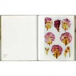 Double page du livre d'Anne et Patrick Poirier. Photographes. Écologie de la photographie, l'arboretum métaphorique