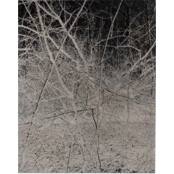 photographie numérotée et signée par l'artiste accompagnant le traite de tête du livre de Gérard Traquandi