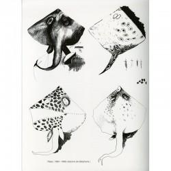 croquis de téléphone dans le catalogue de l'exposition Joël Kermarrec